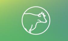 Innovabiotics_web-botones-12